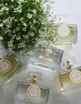 nesti-dante-parfum-90x115